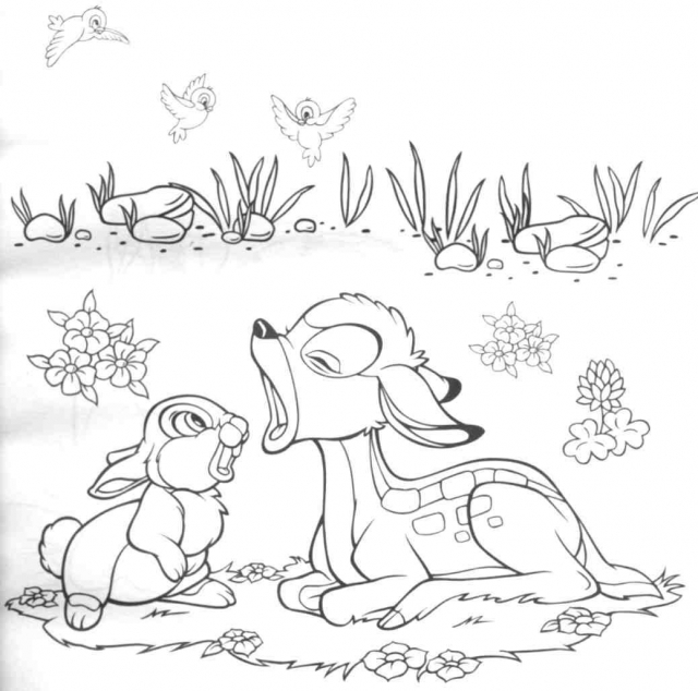 zivotinje slike coloring pages | Bojanke - Bambi 3 - Kids.rs